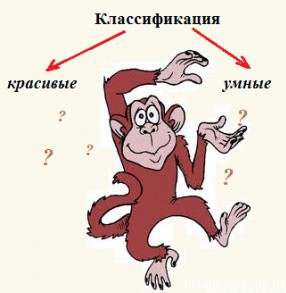 Биологическая систематика