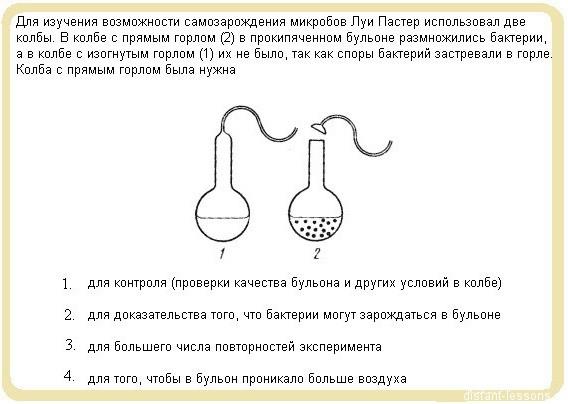A1 ГИА по биологии вариант  3