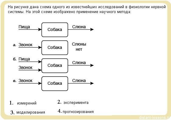 A1 ГИА по биологии 1 вариант