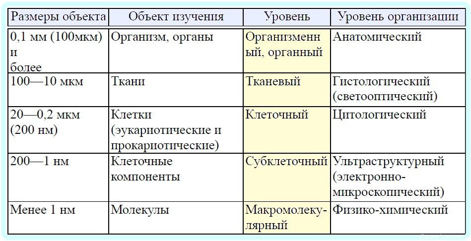 уровни организации живой