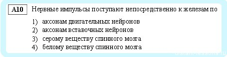 А10 ГИА по биологии