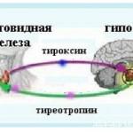 Гормон тироксин