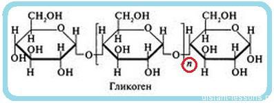 углевод гликоген