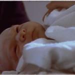Постэмбриональный период развития