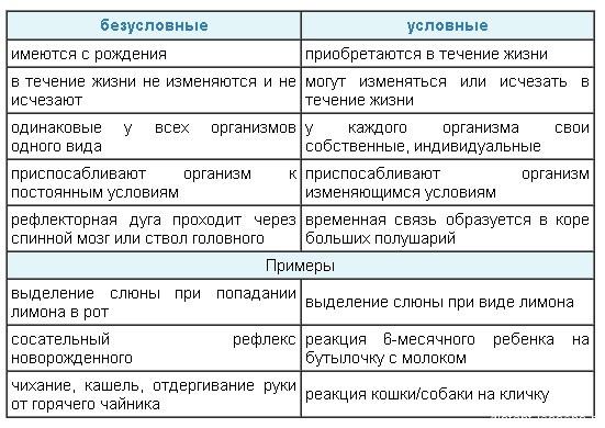 Условные и безусловные рефлексы доклад 734