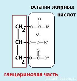 липиды формула