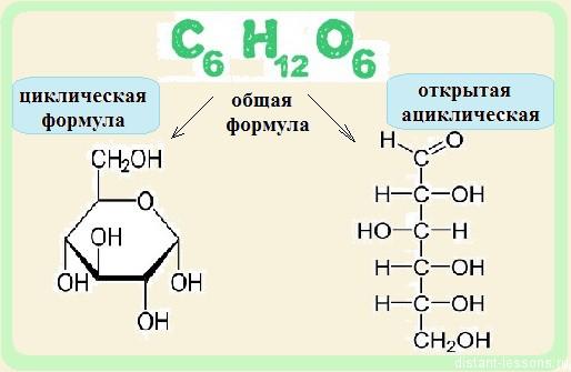 циклические формулы крахмала и гликогена будет