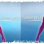 Психология и поведение человека