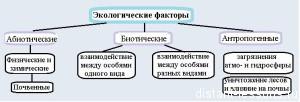влияние экологических факторов на организм